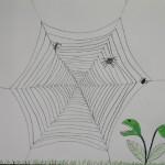 k-DSCN3548 Spinnennetz abgezogen 270417_bearbeitet-3